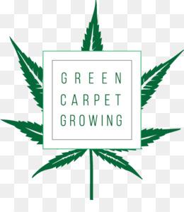 Растет конопля скачать бесплатно far cry 3 сжигание марихуаны